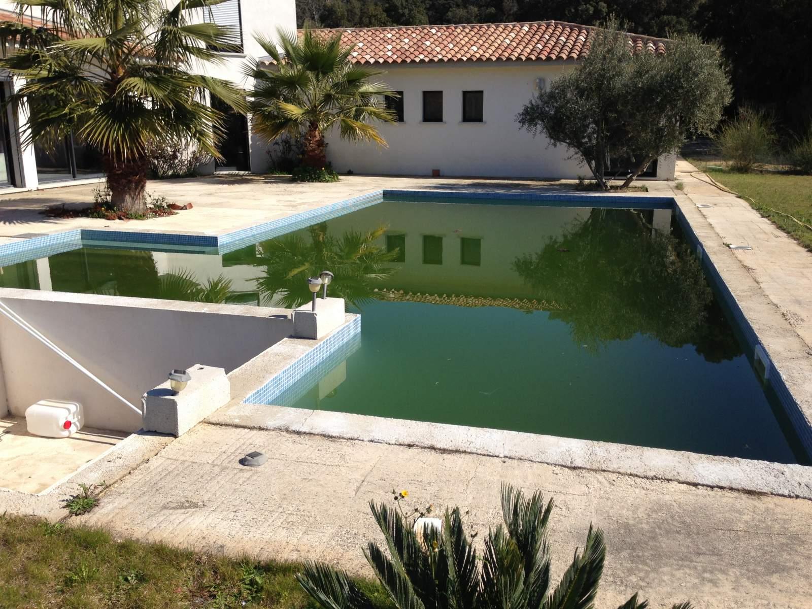 sur istres magnifique contour de piscine sans margelle en