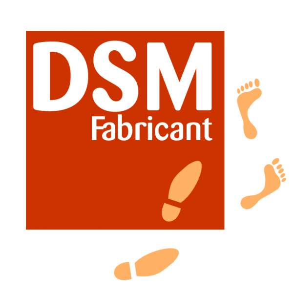 Fabricant résine national DSM